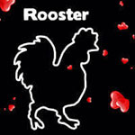 rooster athens