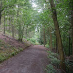 credenhill woods hereford