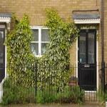 stepney house bed & breakfast stepney green