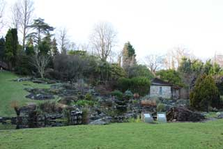 Photo of Rock Garden