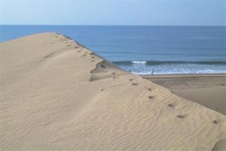 Photo of Maspalomas Beach & Sand Dunes